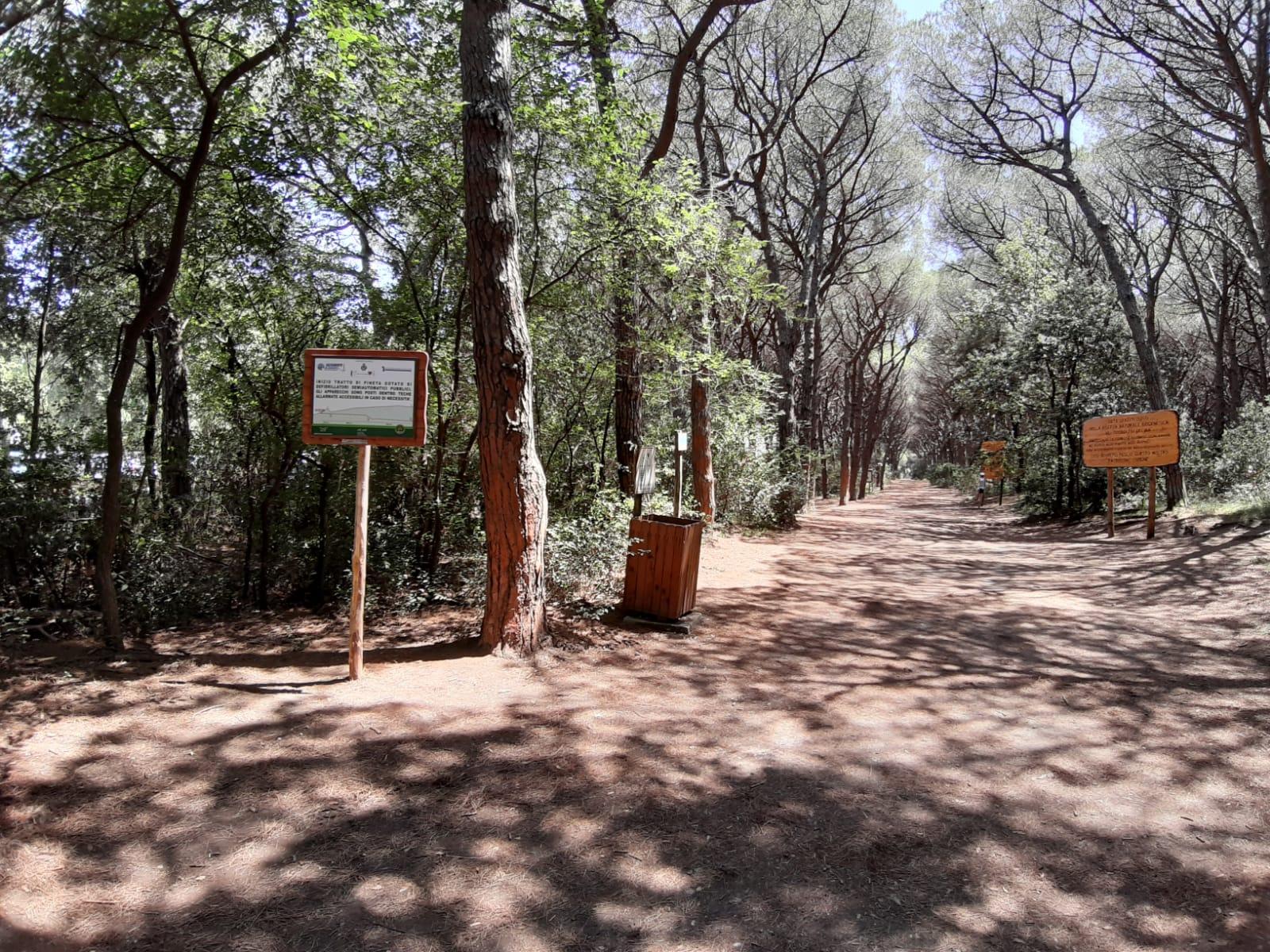 Riserva naturale Tomboli Cecina