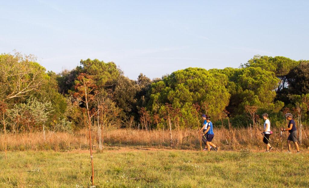 trekking parco costa degli etruschi