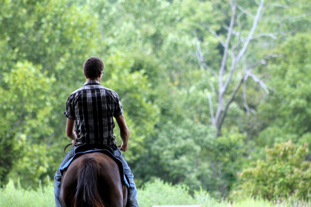 passeggiata a cavallo costa degli etruschi